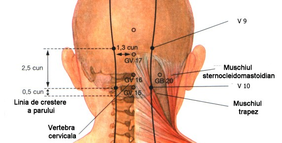 Masajul bioenergetic al scalpului